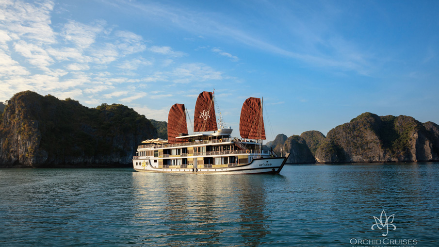 Orchid Cruise (Unique Itinerary - Discovering Lan Ha Bay)